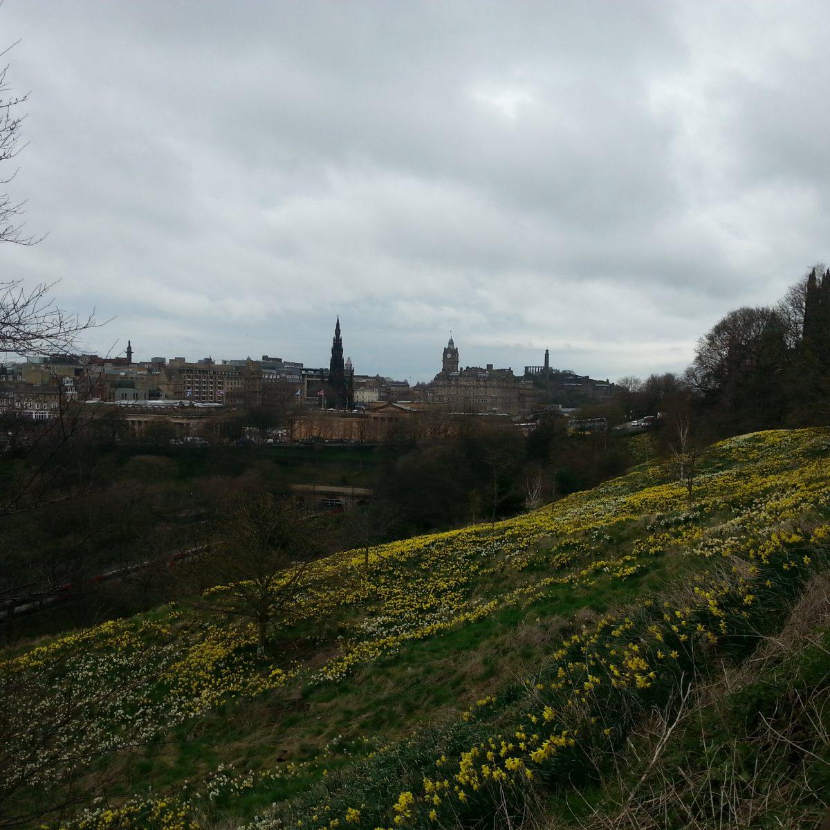 Die Osterglockenblühte am Edinburgh Castle