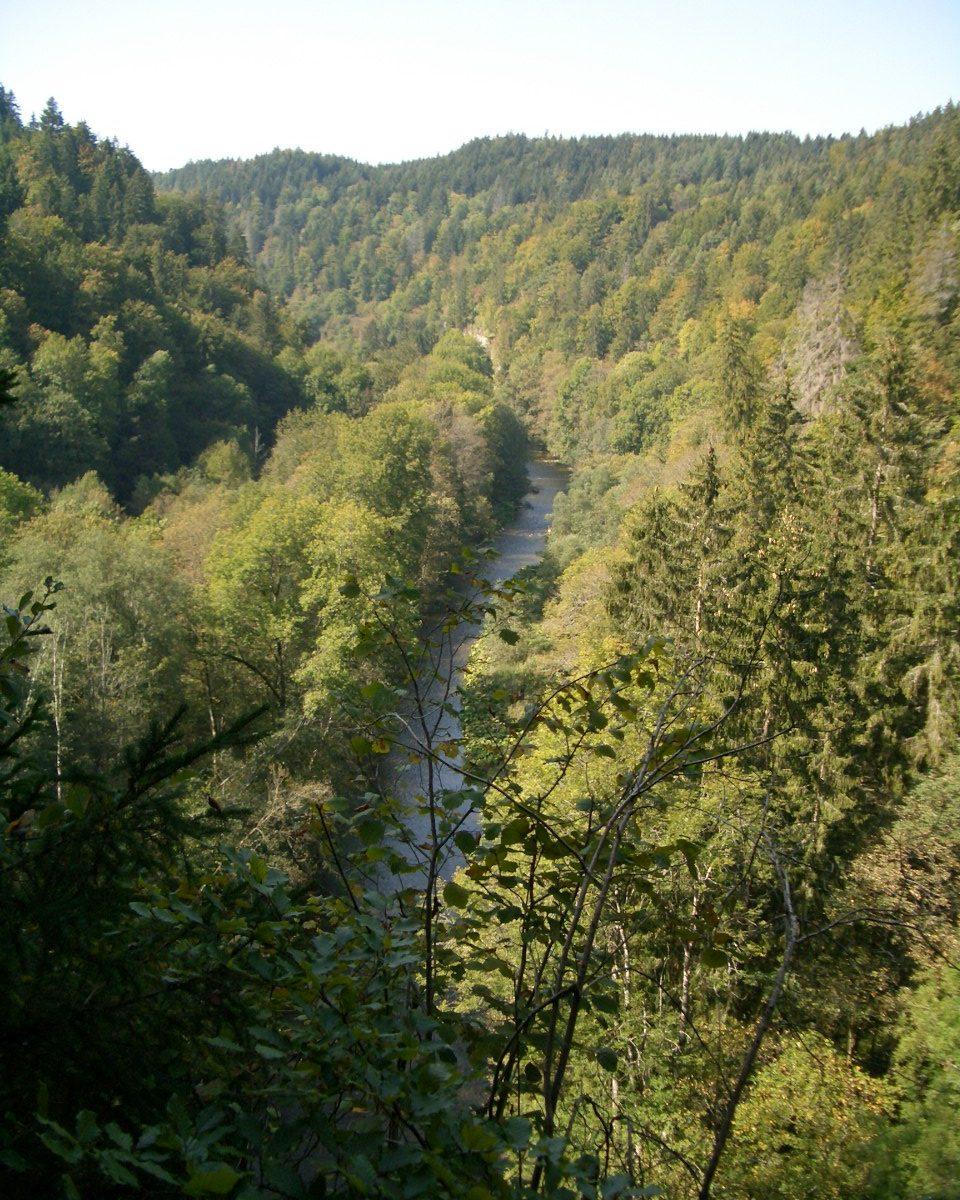 Blick über die Wutachschlucht im Schwarzwald