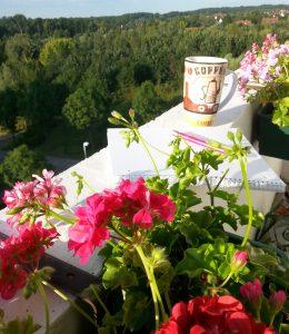 Sonne und Kaffee auf Balkonien, so lässt es sich arbeiten!